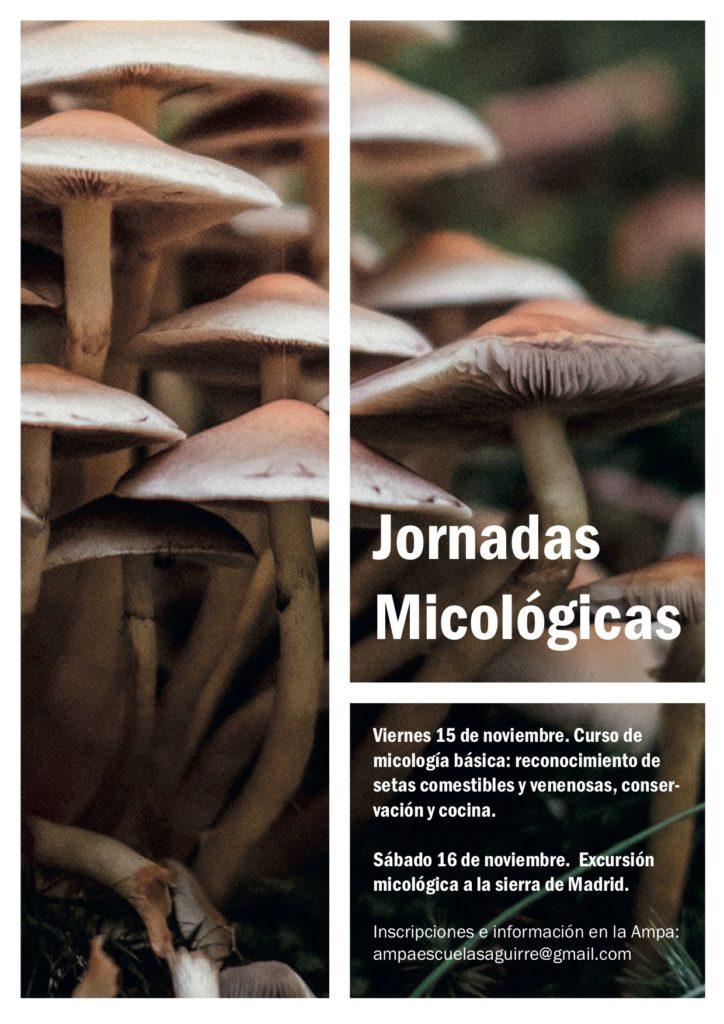 Jornadas micológicas noviembre 2019